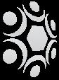MCNC logo watermark